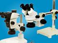 実体顕微鏡カテゴリー